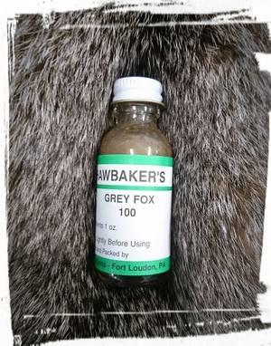 Hawbaker Grey Fox