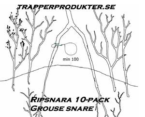 Ripsnara 10-pack